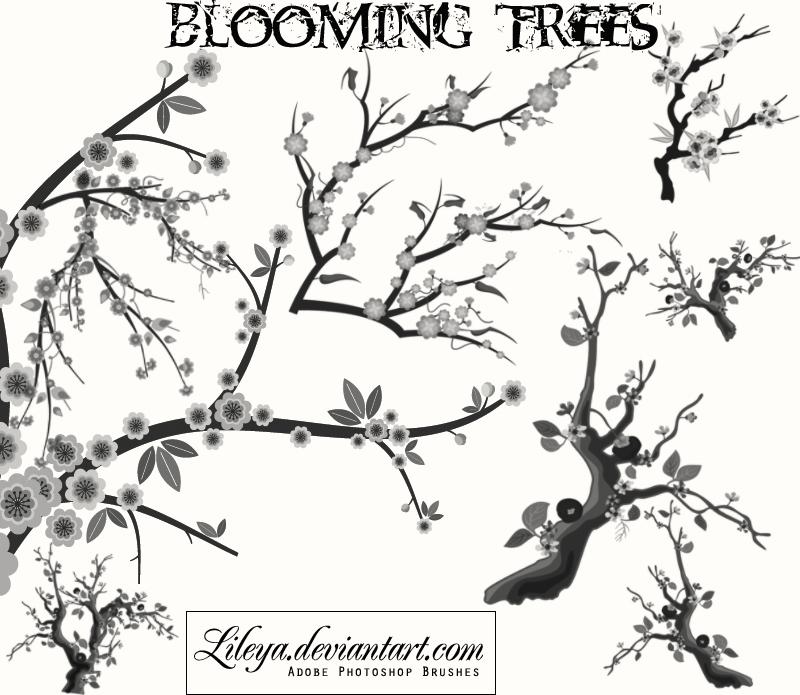 Blooming Trees Photoshop brush