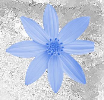 Flower Petals Photoshop brush