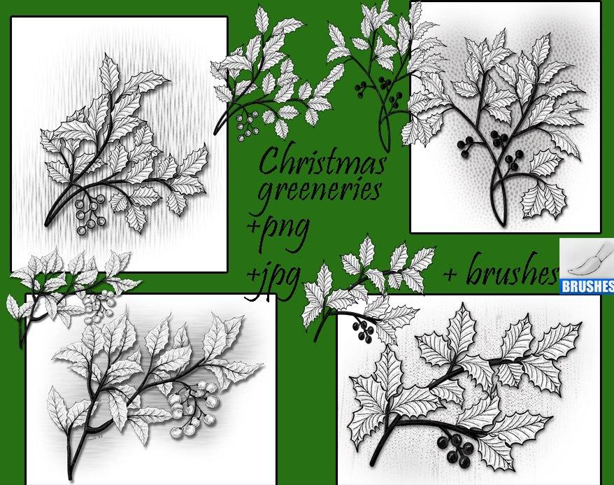 Christmas Greeneries Brushes Photoshop brush