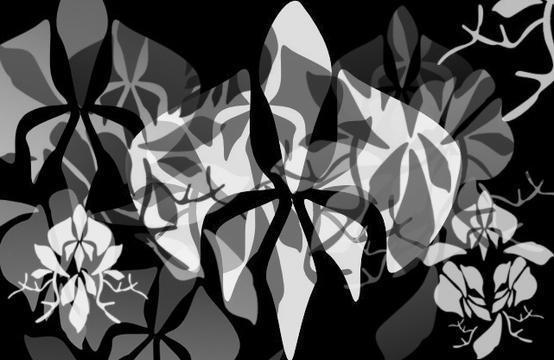 Decorative Orchid Brushes Photoshop brush