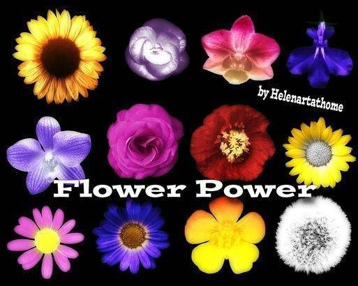 Flower Power1 Photoshop brush