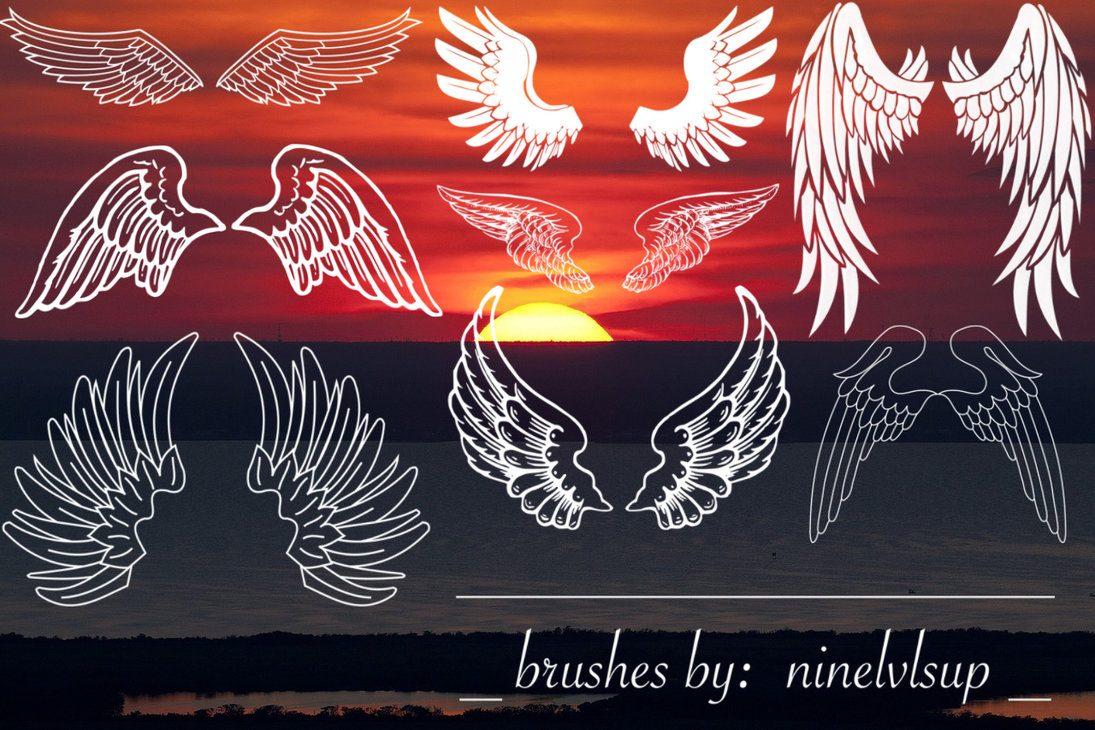 Eight Wings Brushes Photoshop brush