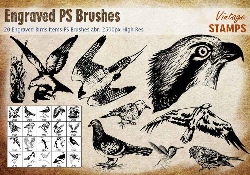 Engraved Bird PS Brushes Photoshop brush