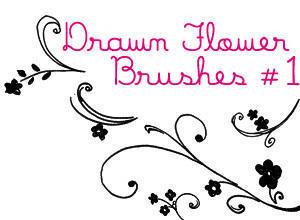 Drawn Flower Brushes Photoshop brush
