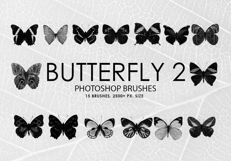 Free Butterfly Photoshop Brushes 2 Photoshop brush
