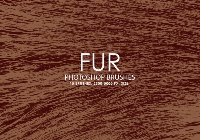 Free Fur Photoshop brushes Photoshop brush