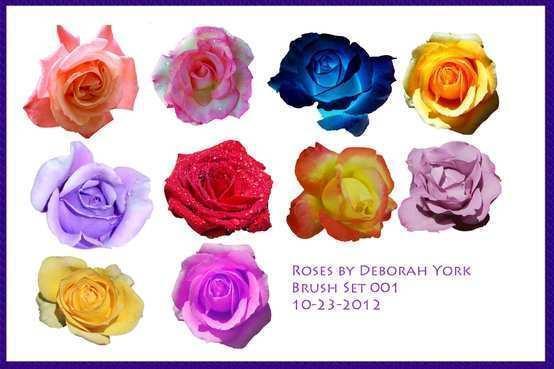Rose Brush Pack Photoshop brush