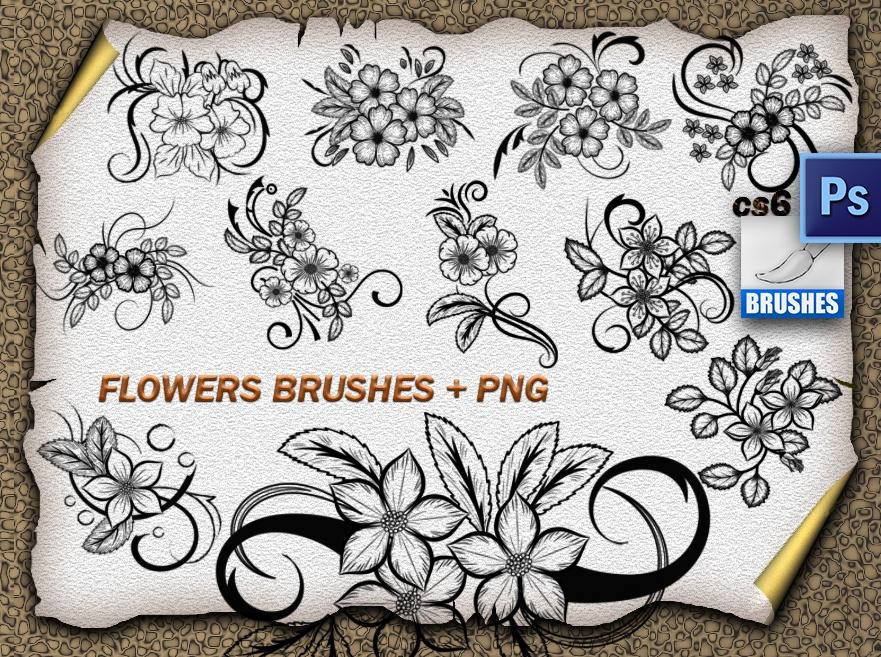 11 Flower Ornaments Brushes Photoshop brush