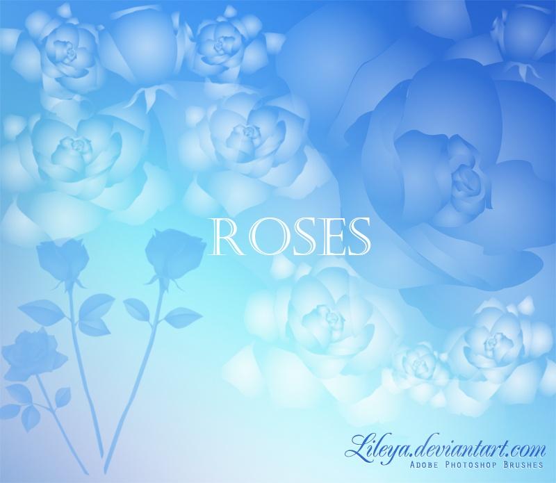 Roses Photoshop brush