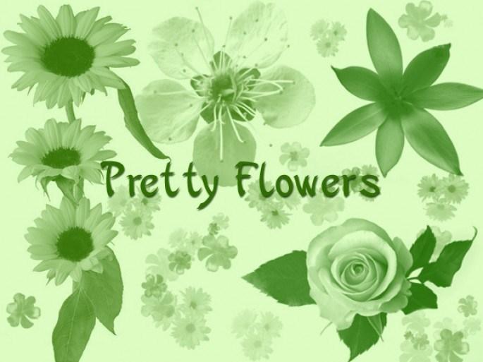 Pretty Flowers Photoshop brush