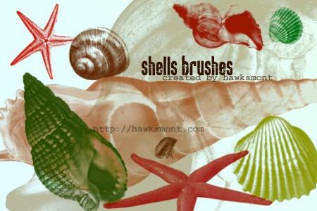 Shells Photoshop brush