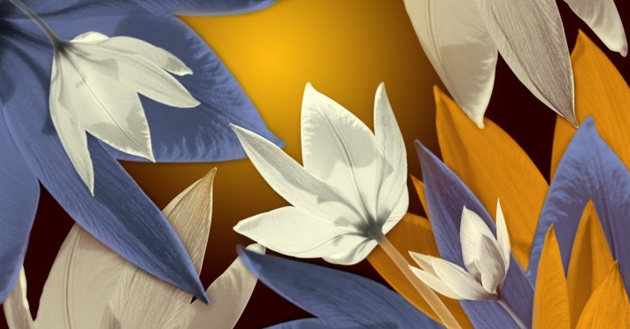 Shiny Flower Brushes Photoshop brush