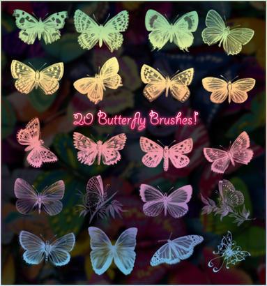20 Butterfly Brushes Photoshop brush