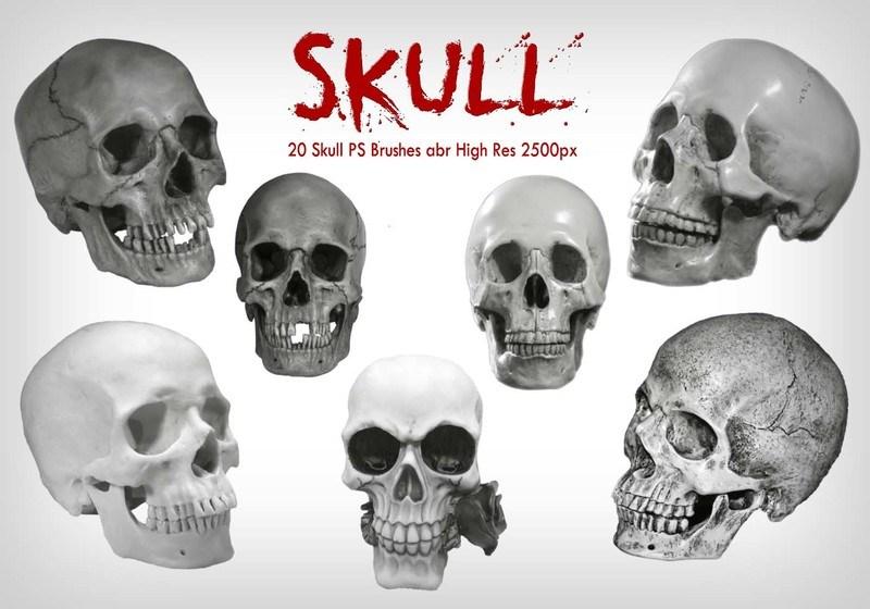 20 Skull PS Brushes abr  vol.7  Photoshop brush