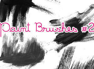 Paint Brushes #2 Photoshop brush