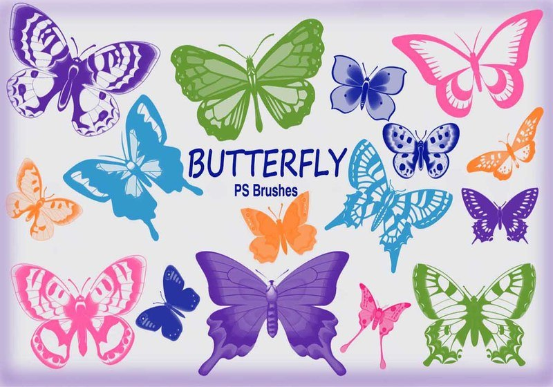 20 Butterfly PS Brushes abr.Vol.8 Photoshop brush