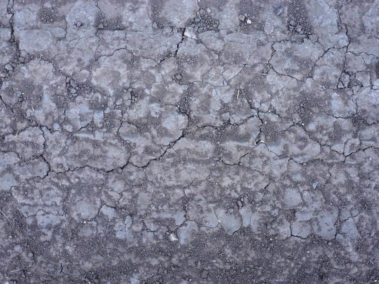 Cracked cement texture Photoshop brush