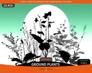 Ground Plants Selection Photoshop brush