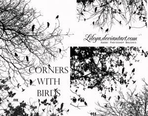 Corners with Birds Photoshop brush