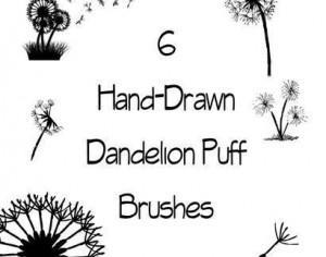 Dandelion Puff Brushes Photoshop brush