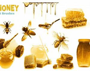 20 Honey PS Brushes abr.  vol.2 Photoshop brush