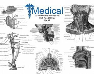 20 Medical PS Brushes.abr Vol.12 Photoshop brush