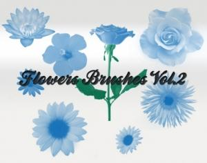 Flowers Vol 2 Photoshop brush
