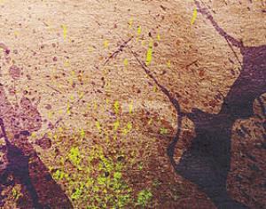 WG Splatter Vol1 Photoshop brush