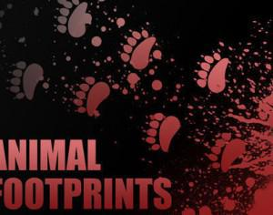 Individual Animal Footprint Brushes Photoshop brush