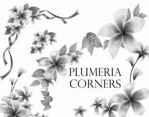 Plumeria Corners Photoshop brush