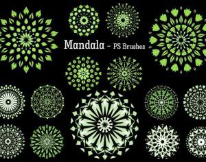 20 Mandala PS Brushes abr. vol.9 Photoshop brush