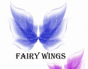 Fairy Wings Photoshop brush
