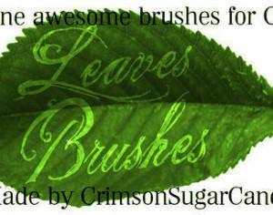 Summer Leaves Photoshop brush