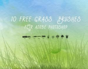 10 Free Grass Brushes Photoshop brush