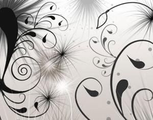Swirls & Seeds Photoshop brush