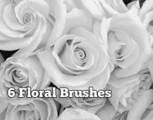 6 Stunning Floral Brushes Photoshop brush