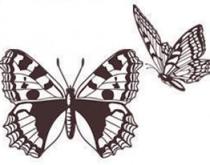 Free Butterfly Brushes Photoshop brush