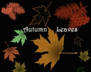 Autumn Leaves Photoshop brush