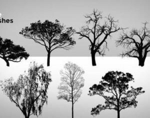 9 High Resolution Tree Brushes Photoshop brush