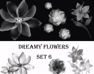 Dreamy Flowers set 6 Photoshop brush