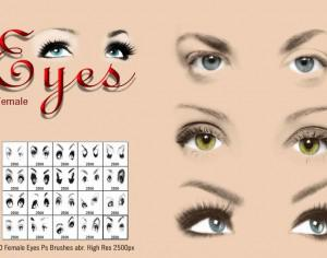 Female Eyes Ps Brushes abr. Photoshop brush
