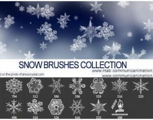 Real Snow Flakes Brushes Photoshop brush