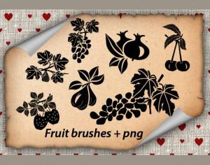 Fruits Brushes Photoshop brush