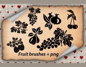 Fruits Brushes Photoshop brush