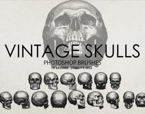 Free Vintage Skulls Photoshop Brushes Photoshop brush