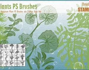 Aquarium Plant PS Brushes  Photoshop brush