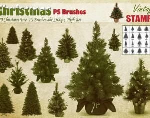 Christmas Tree PS Brushes  Photoshop brush