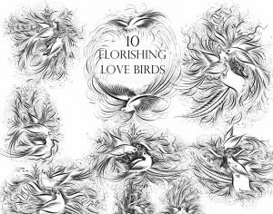 Flourishing Love Birds Photoshop brush