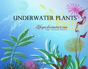 Underwater Plants Photoshop brush