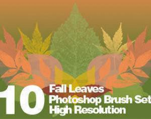 High Res Real Leaf Brushes Photoshop brush
